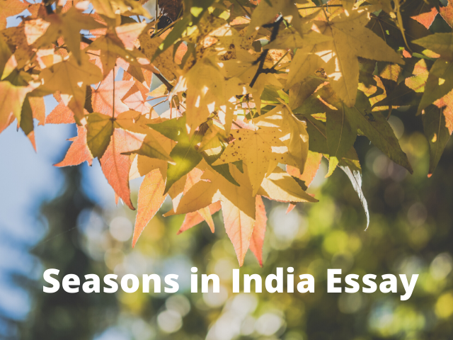 Seasons in India Essay