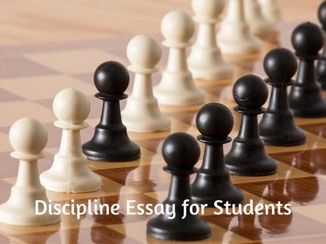Discipline Essay