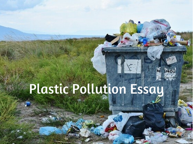 Plastic Pollution Essay